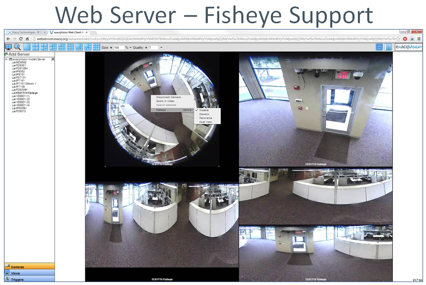 Web Server Fisheye example
